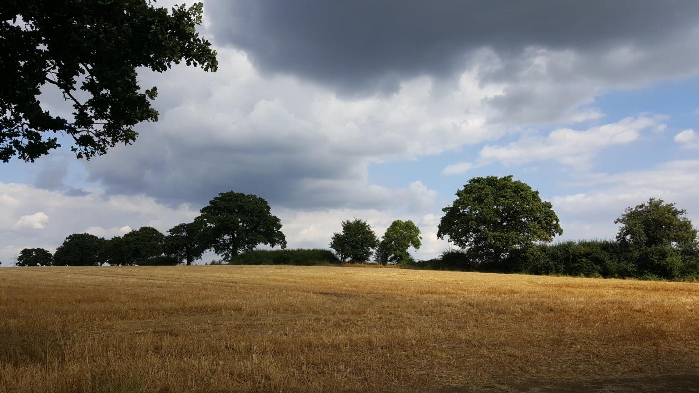 A dramatic landscape